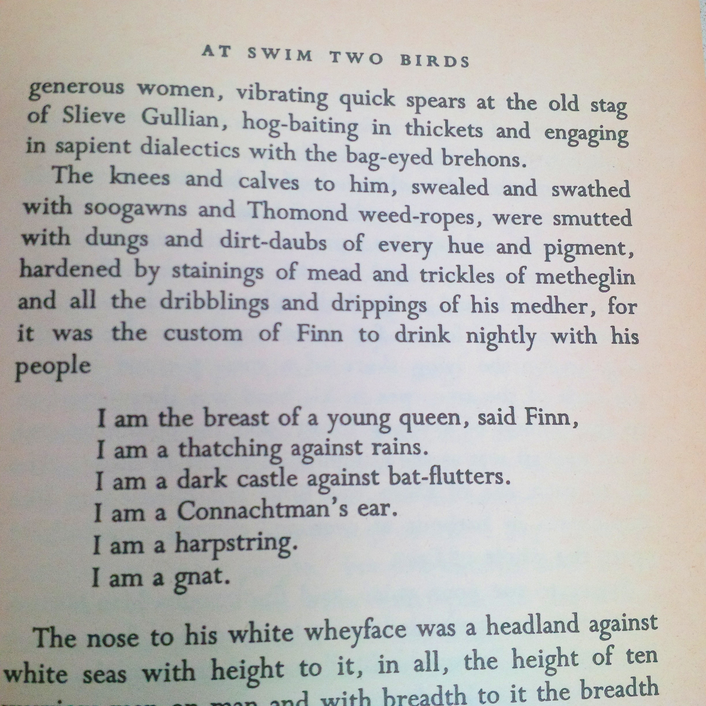 at swim two birds At swim-two-birds (paperback) flann o'brien's innovative metafictional work,  whose unruly characters strike out their own paths in life to the frustration of their .